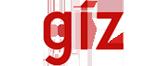 Color Logo - GIZ